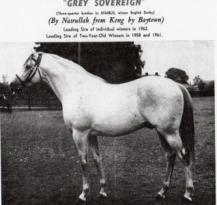 Grey Sovereign